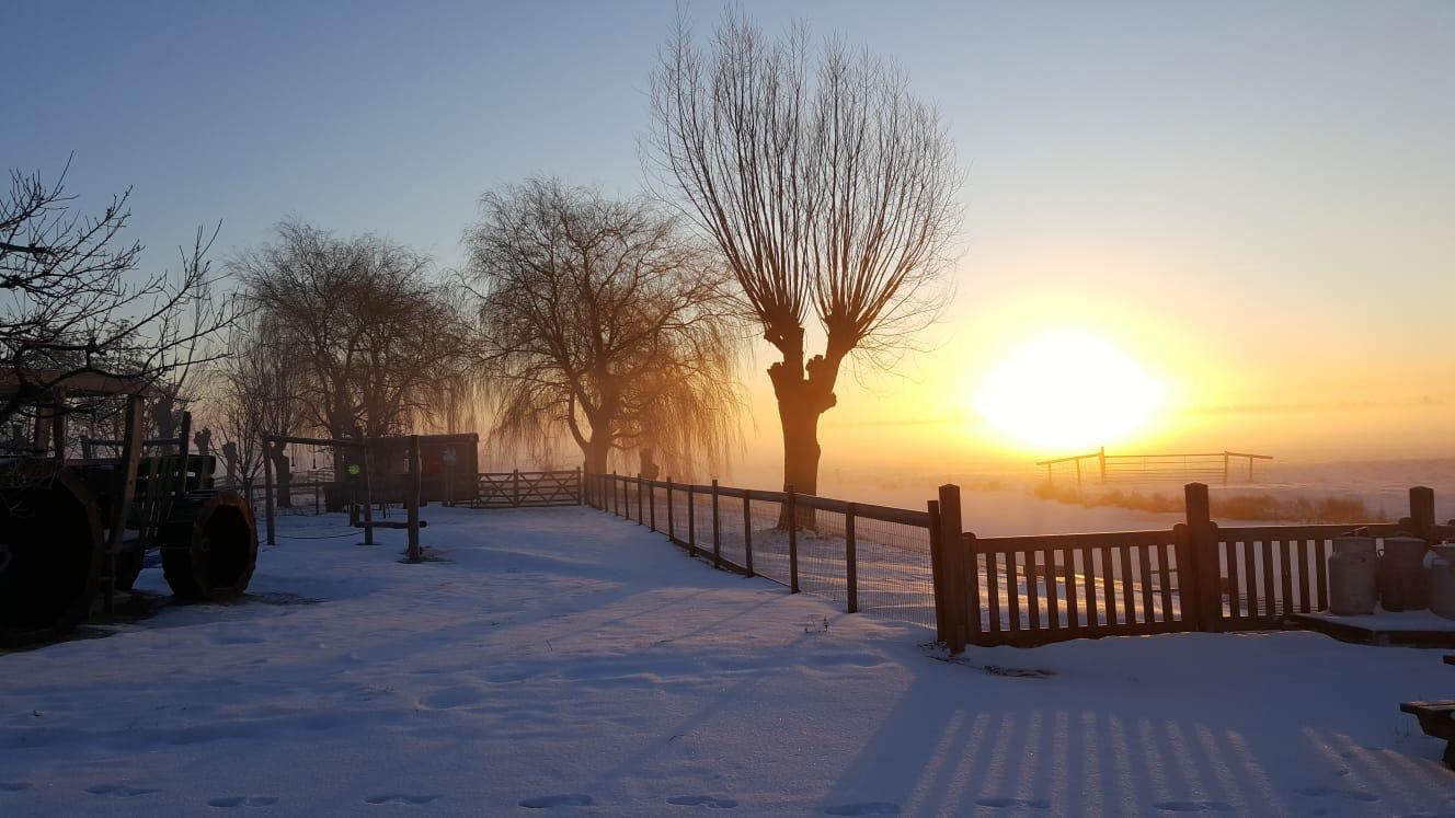 Winter wonderland bij Boederij De Boerinn
