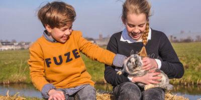 Dieren knuffelen op Camping De Boerinn