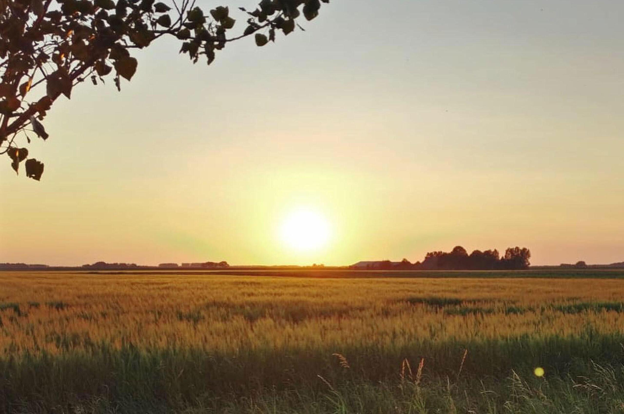 Mooi uitzicht | Camping de Boerinn