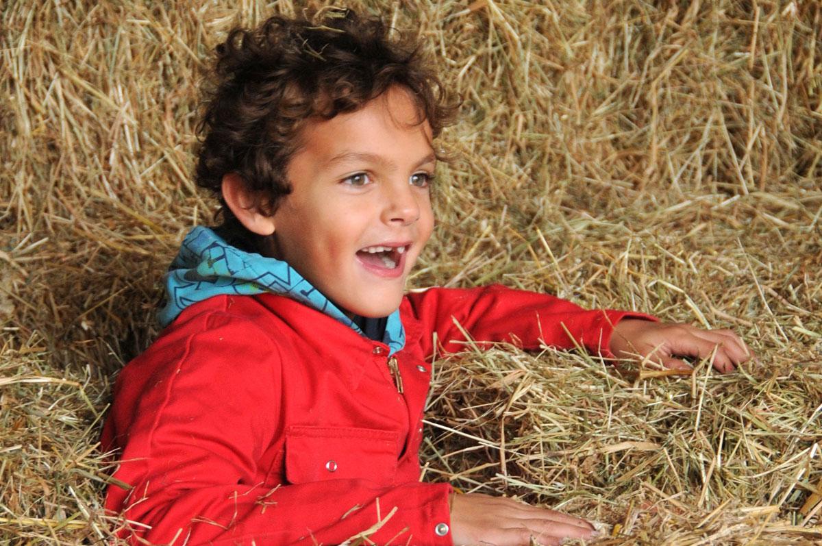 Spelen in hooi bij Boerderij de Boerinn